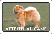 CARTELLO ALL. ATTENTI AL CANE 0791.00.20 D&B